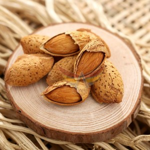 badem kabuğu-almond shell-akyel (4)