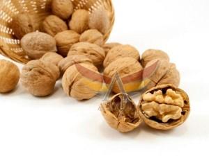 ceviz-walnuts-akyel (2)