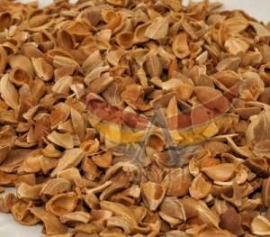 kayısı çekirdeği kabuğu-apricot kernel shell-akyel (8)