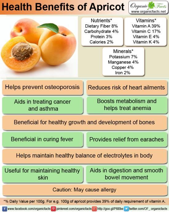kayisi-apricot